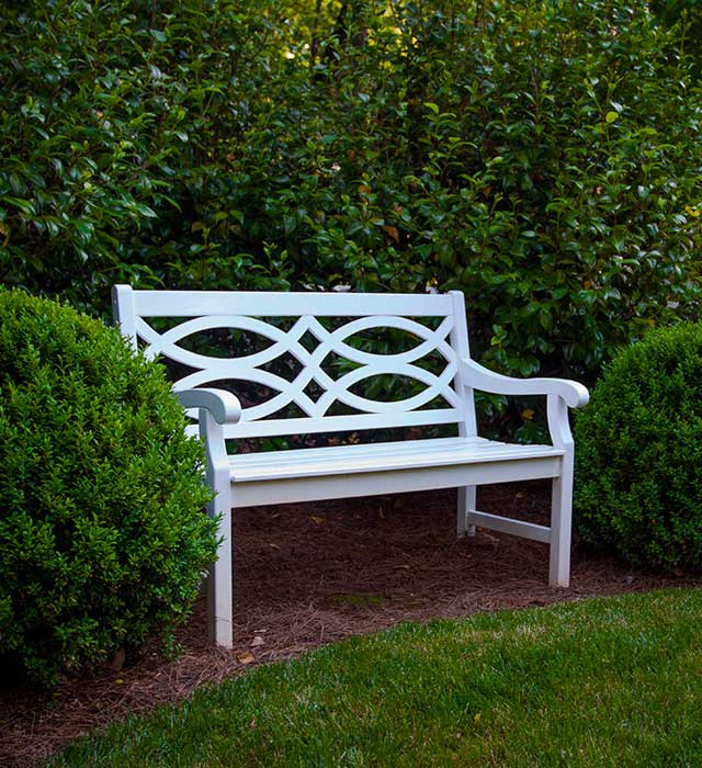 Bench on Cape Cod